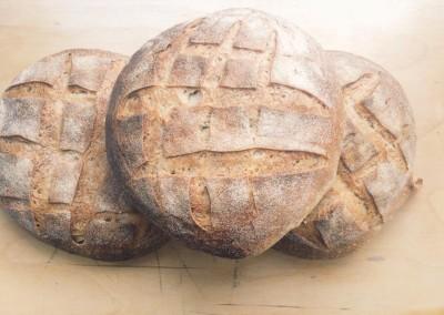 New Park Sourdough Loafs